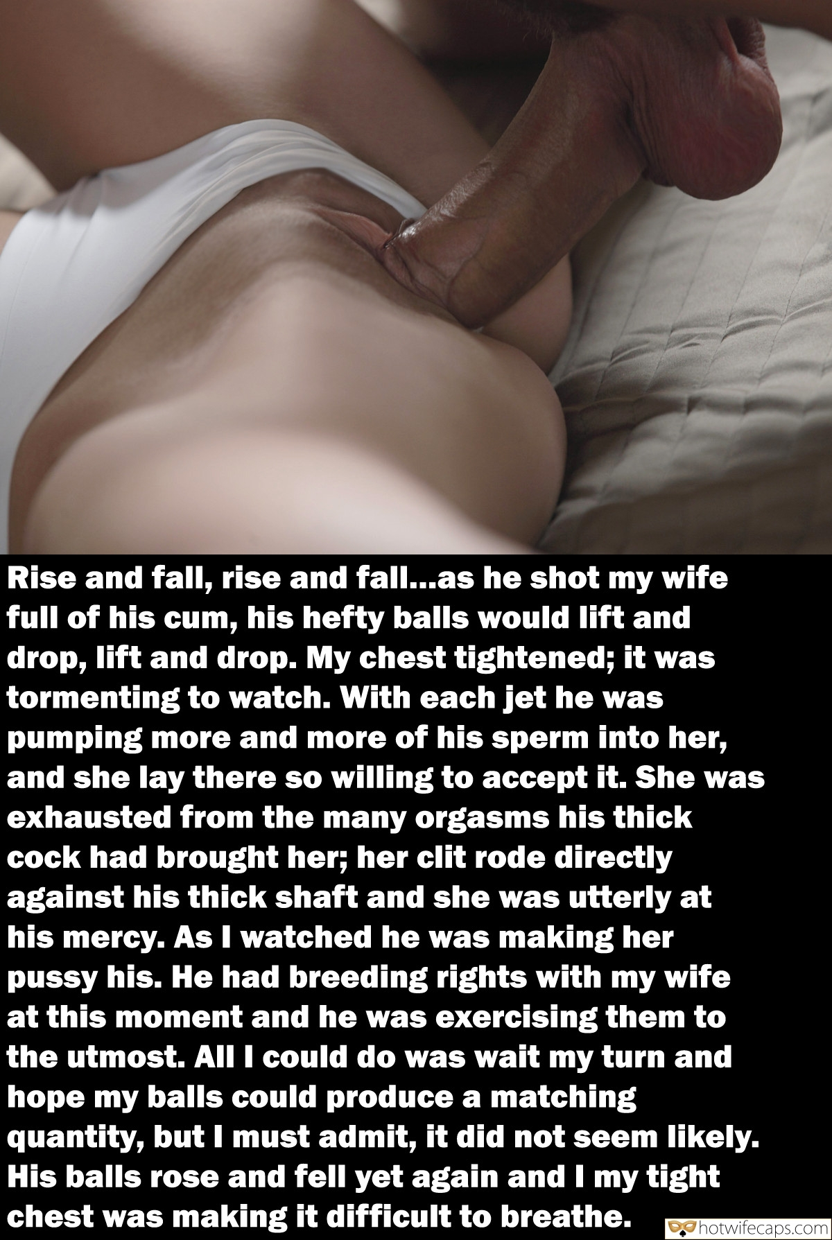Impregnation Bull  hotwife caption: Rise and fall, rise and fall…as he shot my wife full of his cum, his hefty balls would lift and drop, lift and drop. My chest tightened; it was tormenting to watch. With each jet he was pumping more and...